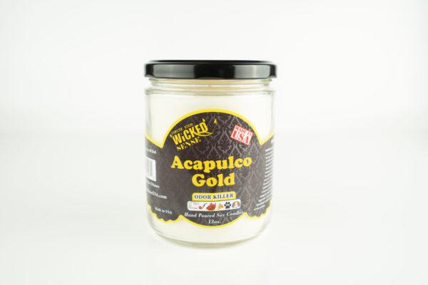 WickedSense-odor-eliminator-candle-AcapulcoGold